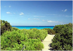 Reise nach Formentera